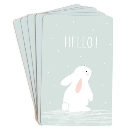 Mini cartes Ours polaire