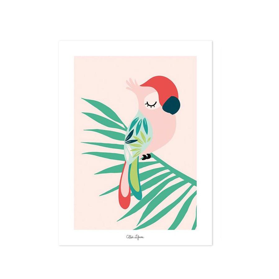 Affiche Perroquet rose