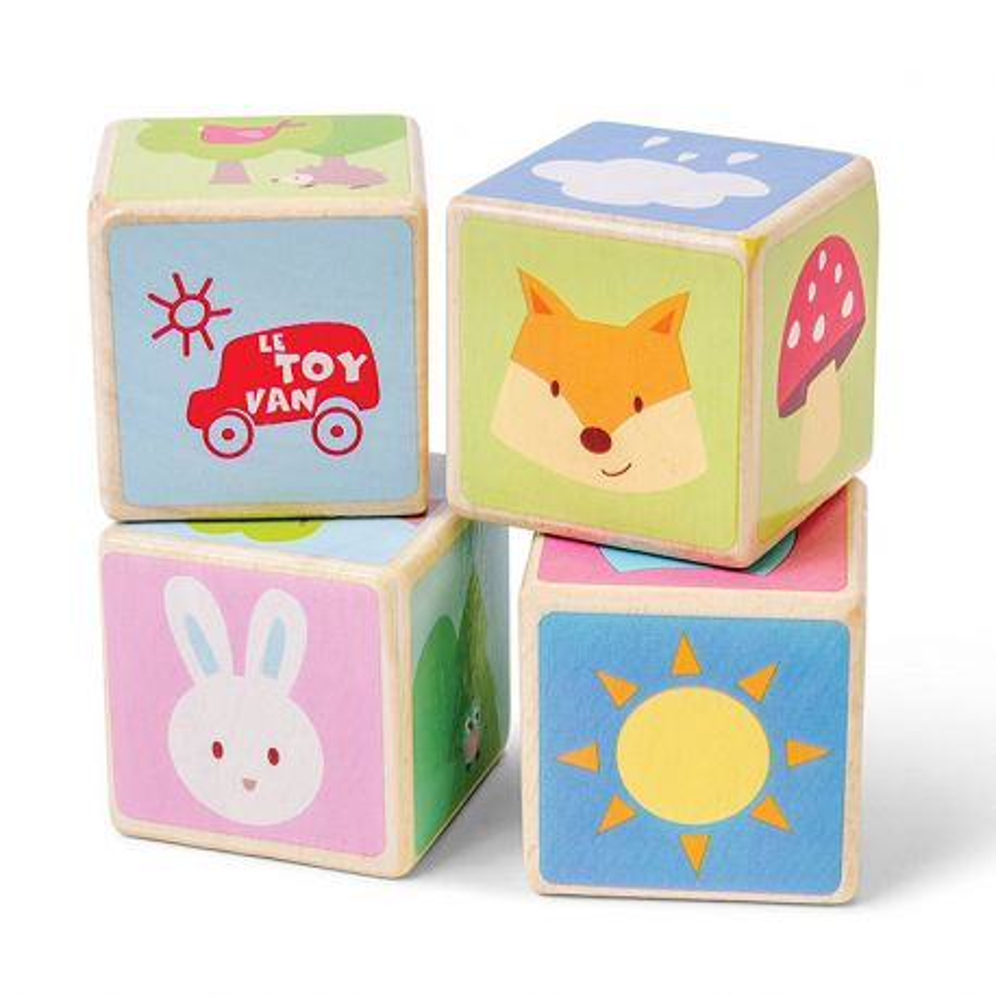 Set de 4 cubes Petilou