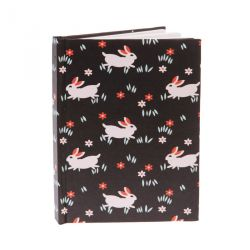 Carnet lapin Sall and belle