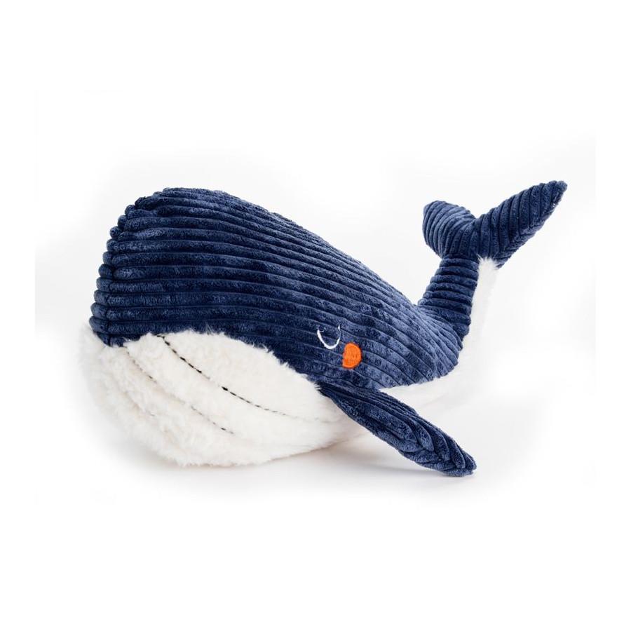 Grande baleine Edgar