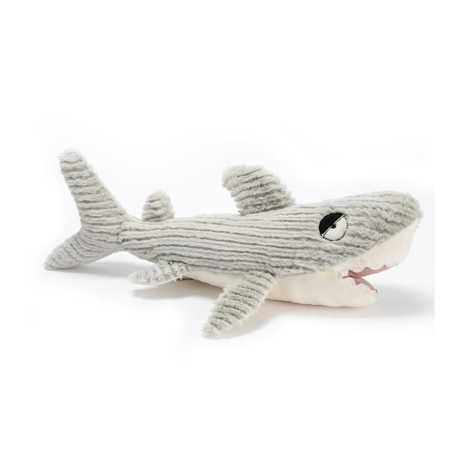 Requin Martin